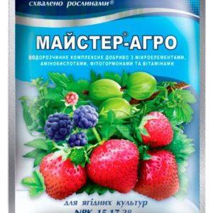Mастер-Агро для ягодных культур 100 г