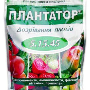 Плантатор созревание плодов, 1 кг