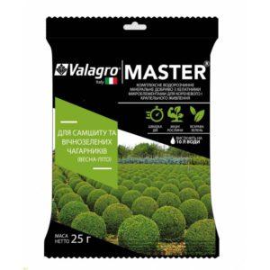 Комплексное минеральное удобрение для самшита и вечнозеленых кустарников Master (Мастер) 25 г NPK 17.6.18 Весна-Лето Valagro (Валагро)
