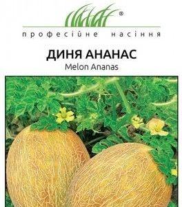 Семена дыни Ананас 0.5 г Tezier (Франция)