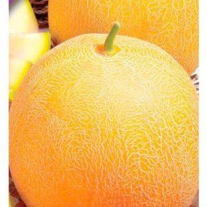 Семена дыни Лада, 2 гр