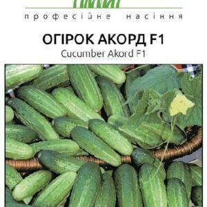 Семена огурца Аккорд