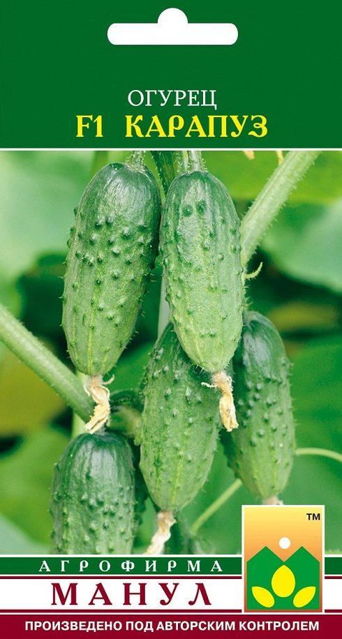Семена огурца Карапуз F1, 10 семян