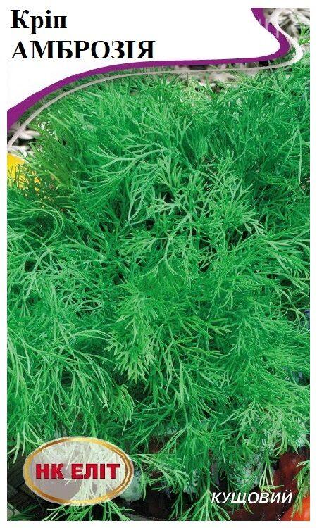 Семена укропа Амброзия