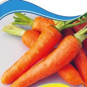 Семена моркови Артек, 2 г.