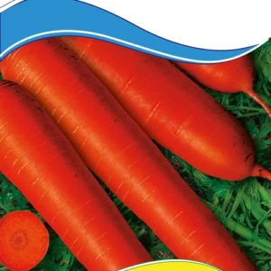 Семена моркови Витаминная 6, 2 г.