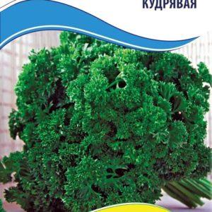 Семена петрушки Москраузе (Кудрявая), 1 г.