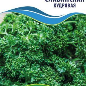 Семена петрушки Славянская (Кудрявая), 10 г.