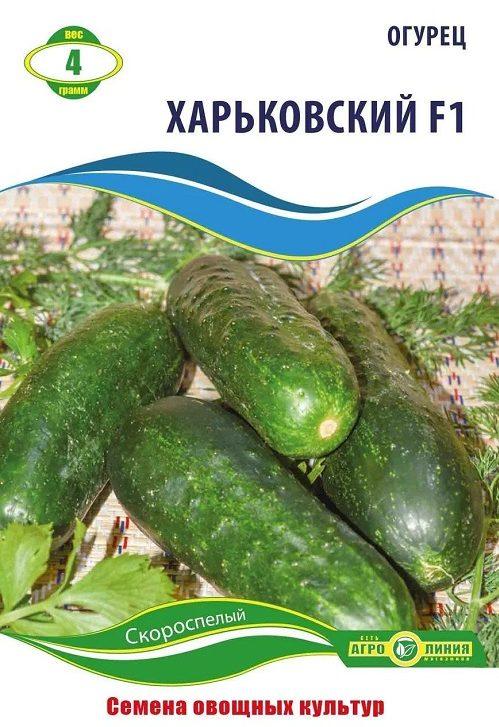 Семена огурца Харьковский, 4 г.