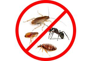 Средства защиты от тараканов, прусаков, клопов, блох, домашних и садовых муравьев и других