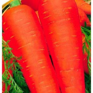Семена моркови Артек, 2 г