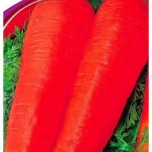 Семена моркови Долянка, 2 г