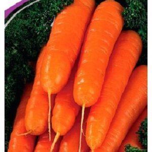 Семена моркови Витаминная 6, 2 г