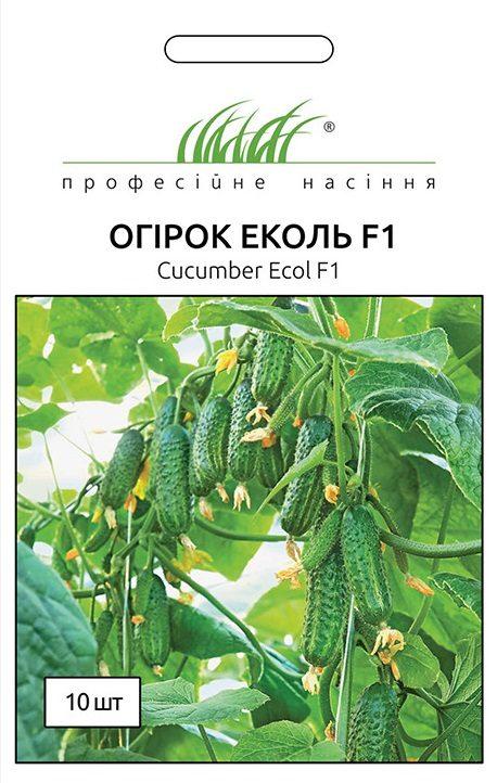 Семена огурца Еколь F1 , 10 семян Syngenta (Голландия)