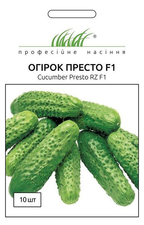 Семена огурца Престо F1, 10 семян Rijk Zvaan (Голландия)