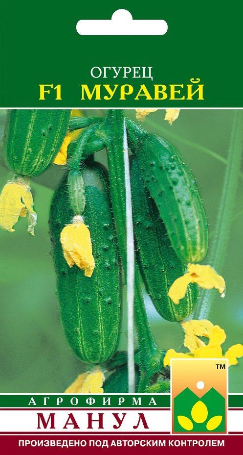 Семена огурца Муравей F1, 10 семян