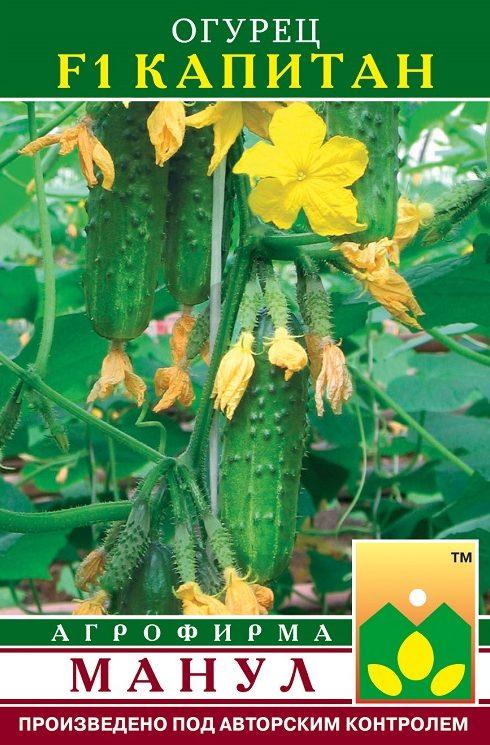Семена огурца Капитан F1, 10 семян