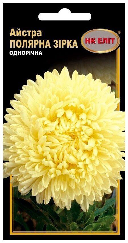 Семена цветов Астра Полярная Звезда