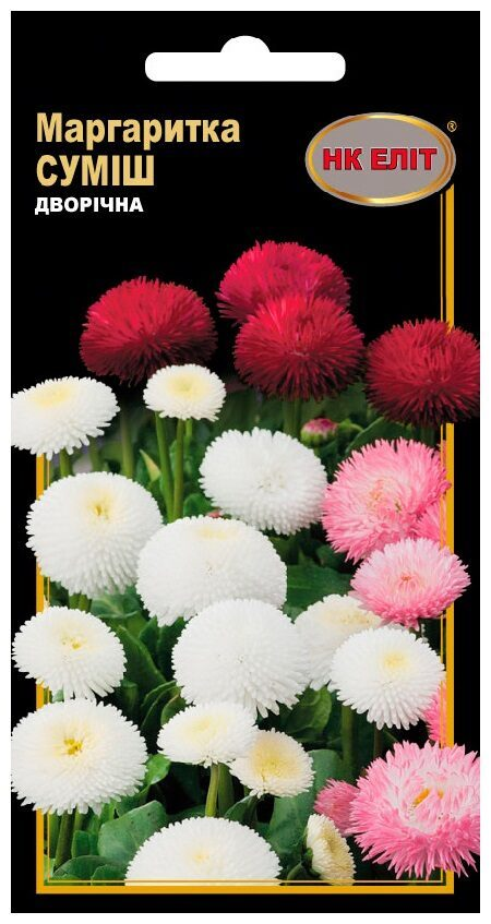 Семена цветов Маргаритка Смесь