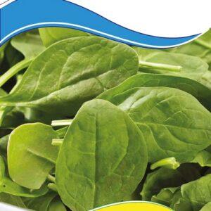 Семена шпината Виктория