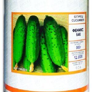 Семена огурца Феникс 640