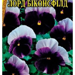 Семена цветов Виола Лорд Биконсфилд